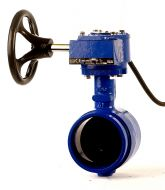 Grooved End Butterfly Valve